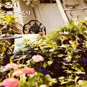 ガーデン用品やインテリアは、ディノスのカタログでじっくりと🧐💕🧐💕‼️‼️