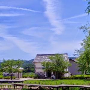 高松城址公園と大鳥居