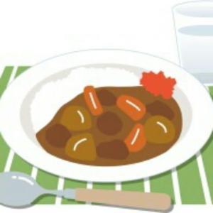 《食べくらべ企画》カレーライス編(牛丼店)