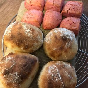 明日はパンと美ーツのいちにち。です!