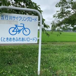サイクリングロードを走る