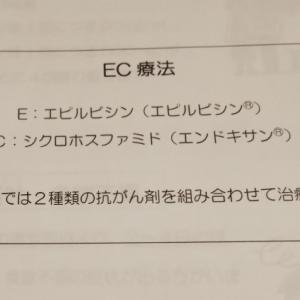 ゼローダ終了~EC療法へ~