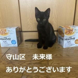 猫ご飯&猫用品御礼②