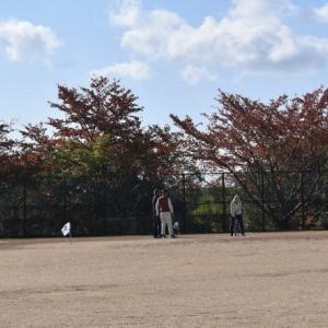 朝からグランド・グランドゴルフ4ラウンドプレー、午後がスポーツセンター・アリーナでテニス。