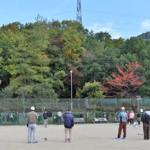 グランド・ゴルフ。 しらかば公園の紅葉。