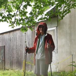 雨の中、高代寺・獣舎の見回りに登りました。