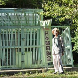 久しぶりに高代寺・獣舎の見回りに登りました。