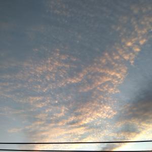 10.16 うろこ雲の行方 (´ー`)