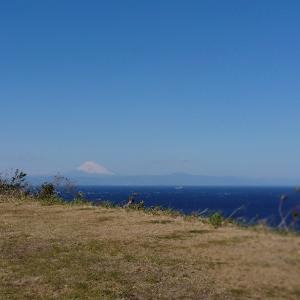 伊豆大島のサバ釣り