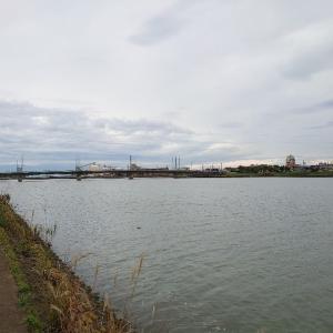 河口巡るシーバス釣り1(釣り鉄)