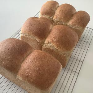 てっぺんは焦げやすいが側面に色がつかない食パン