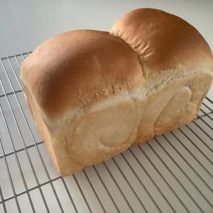 食パンの感動メール