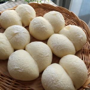 もっと上の『白パン』に出会えた感動!!