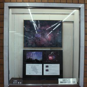稲城市役所で展示してます!