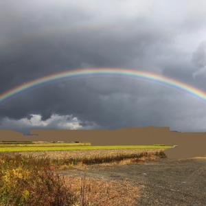 二重の虹の間