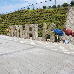 ピクニックカフェ【静岡県三島発:絶景吊り橋の先にある憩いのカフェとは?】