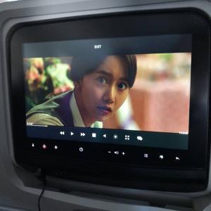 シーグリ2020 DVD ヒュヨン編