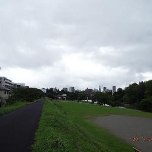 午後から少し晴れてきました、