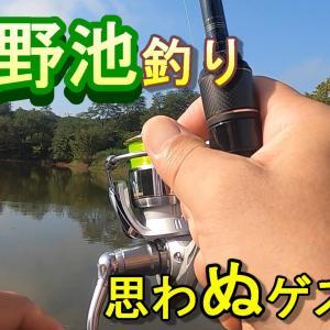 夏の野池釣り『思わぬゲスト!?』