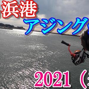 2021年 小名浜港(春・海釣り)アジング釣り!【果たして釣果は!?】 (ルアーフィッシング)