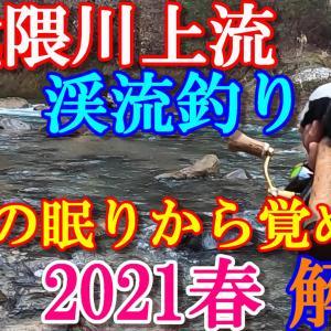 2021年 阿武隈川上流 渓流釣り(春)福島原発事故から長い月日が経ち、10年ぶりに阿武隈川渓流