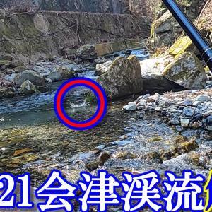 2021年4月渓流解禁(春 )渓流釣り!二刀流釣りやってみた。思わぬ釣果!?【東北渓流・福島県南