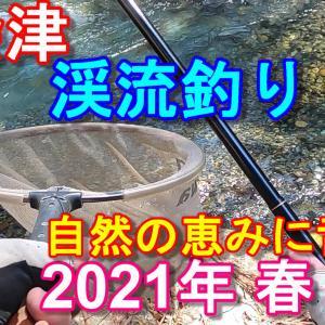 2021年4月11日【南会津・渓流解禁(春 )上流部編】自然の恵みに舌鼓!思わぬ釣果!?