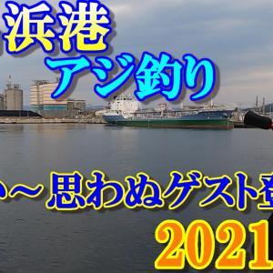 2021年(夏)福島県 いわき市 小名浜港 海釣り! ライトソルト・投げサビキ釣り。嬉しい~釣れ