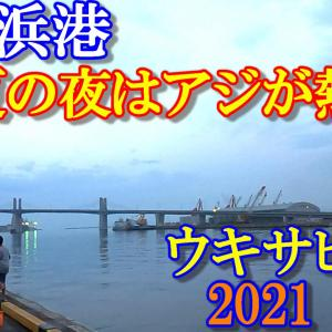2021年 いわき市 小名浜港(夏・海釣り)アジ釣り!真夏の夜はアジが熱い!今、アジ・サバが釣れ