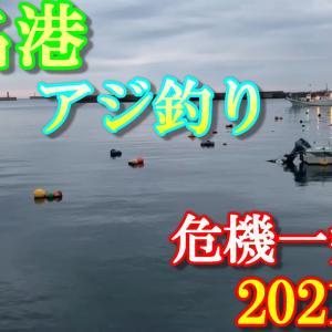 2021年 秋 いわき市 江名港 小名浜港 【サビキ釣り】「海のルアー釣り!」今、アジ・サバ・シ
