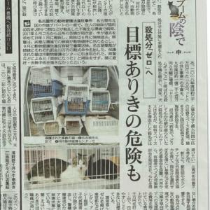 【名古屋市】ペットとの共生事業に1億700万円増額!それみんなの税金ですよね?