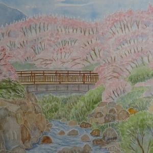 三原市 御調八幡宮の桜