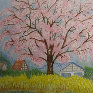広島市湯来町のしだれ桜
