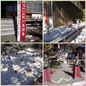 縄文DNA野外展in三澤寺に行って来ました♪