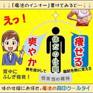 熱を逃がして気化熱で冷ます。体の仕組冷却機能をさらに生かした方法です。