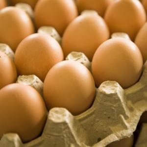 卵は1日何個までOK?