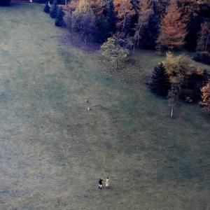 40年前の回顧写真 17(散歩で出会う犬友)