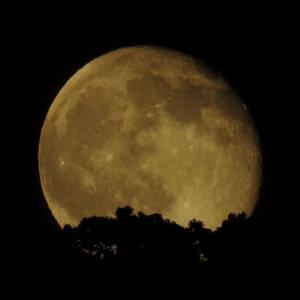 新月の日にとある夜の立ち待ちの月