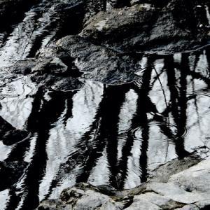 水の形 (冬の岩清水)