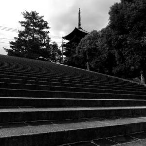 ちょっと奈良へ 1