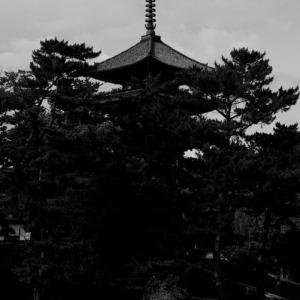 ちょっと奈良へ 2
