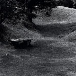 今日のベンチ 2