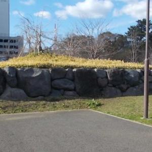 駿府城のハート石