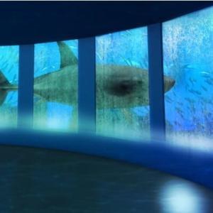 最新の映像表現を駆使したエンタテイメント水族館が沖縄に誕生!!!