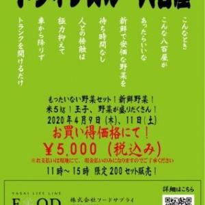 コロナウイルス対策「ドライブスルー八百屋」始まる!!!