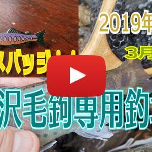 養沢の解禁釣行時の動画2019
