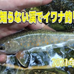 知らない渓の釣行動画
