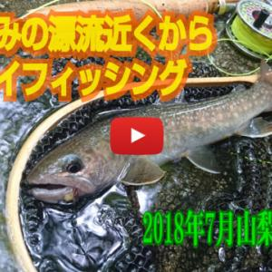 山梨源流釣行動画