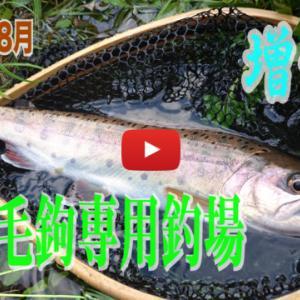 養沢行った時の増水釣行動画