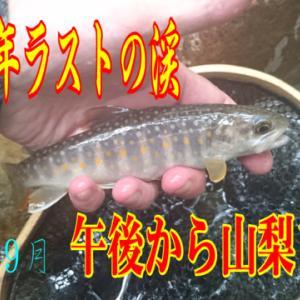山梨ラスト釣行の動画